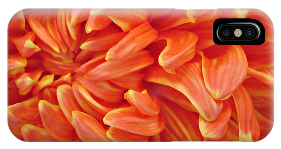 Macro IPhone X Case featuring the photograph Close up of orange yellow flower petals. by Jacqueline Milner