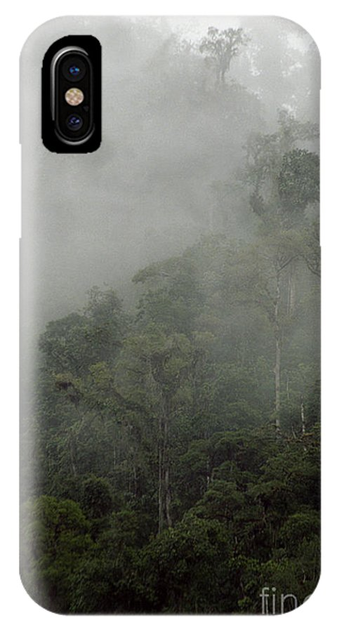 Rainforest IPhone Case featuring the photograph Cloud Forest by Kathy McClure