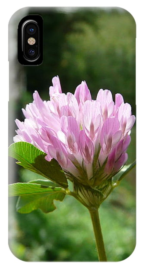Red IPhone X Case featuring the photograph Clover 1 by Valerie Ornstein