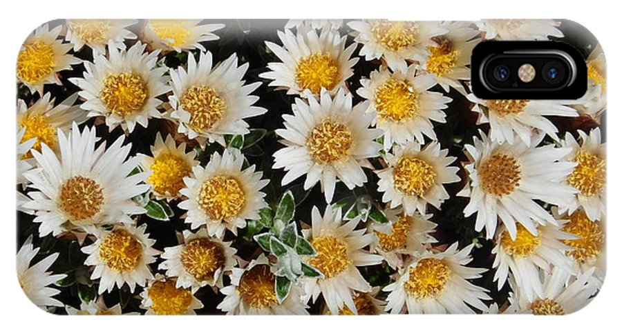 Flowers IPhone X Case featuring the photograph Collective Flowers by Shelby Bryson