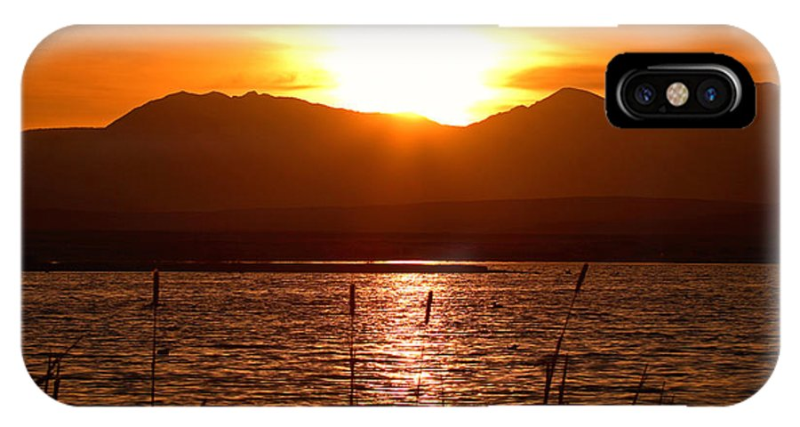 Colorado IPhone Case featuring the photograph Colorado Marsh At Sunset by Max Allen