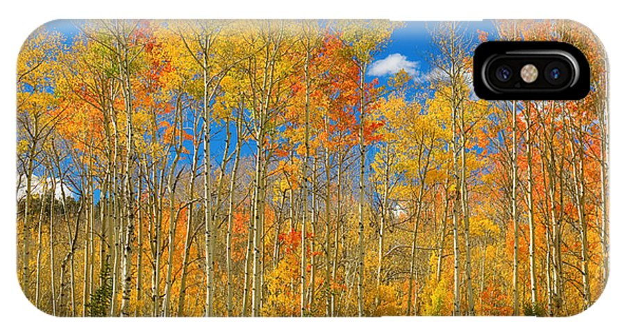 Autumn IPhone X Case featuring the photograph Colorful Colorado Autumn Landscape by James BO Insogna