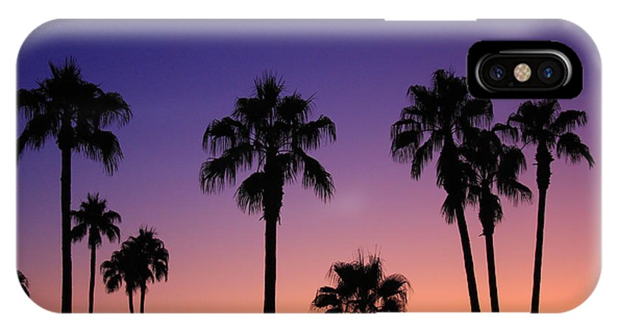 Sunsets IPhone X Case featuring the photograph Colorful Tropical Palm Tree Sunset by James BO Insogna