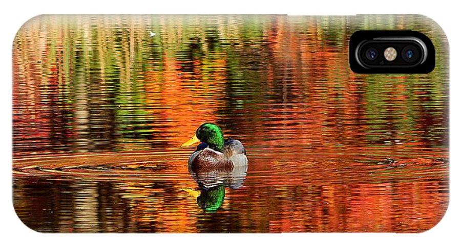 Colors Of The Morninng IPhone X Case featuring the photograph Colors Of The Morning by Karen Cook