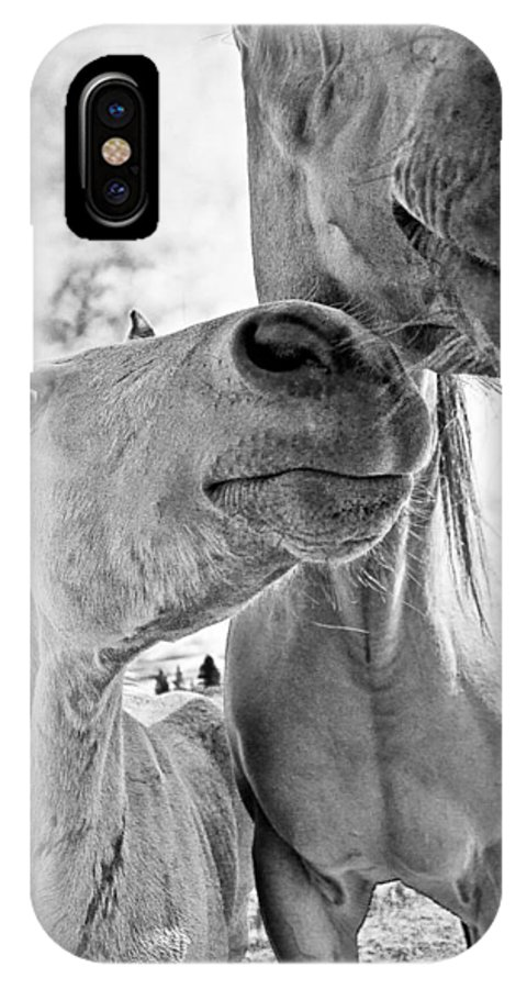 Joseph IPhone X Case featuring the photograph Colt 003 by Charles Frates