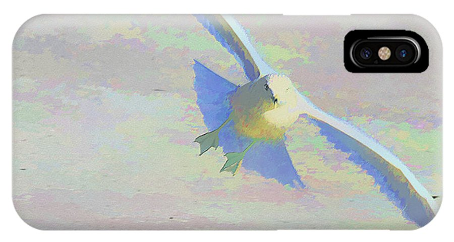 Bird IPhone X Case featuring the photograph Coming In by Deborah Benoit