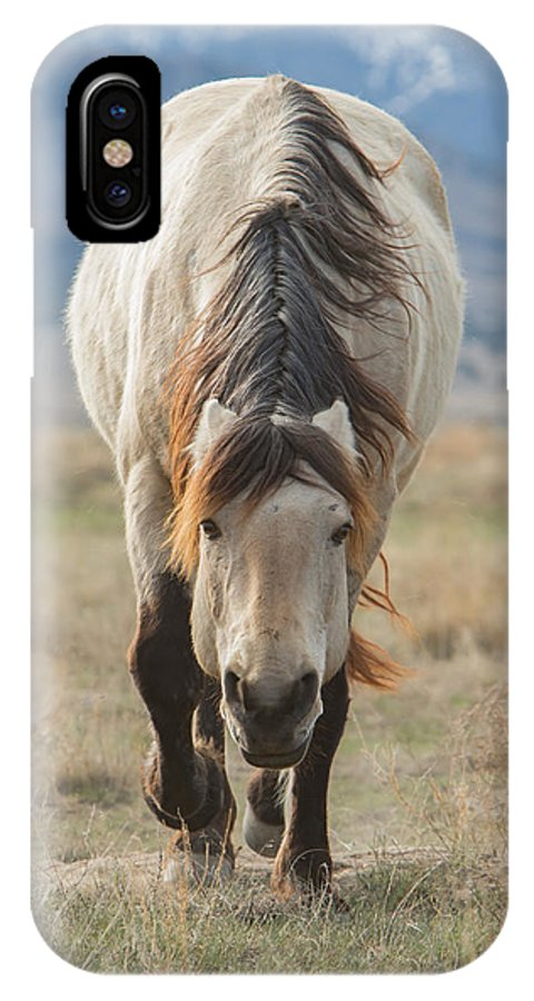 Horse IPhone X Case featuring the photograph Coming My Way by Kent Keller