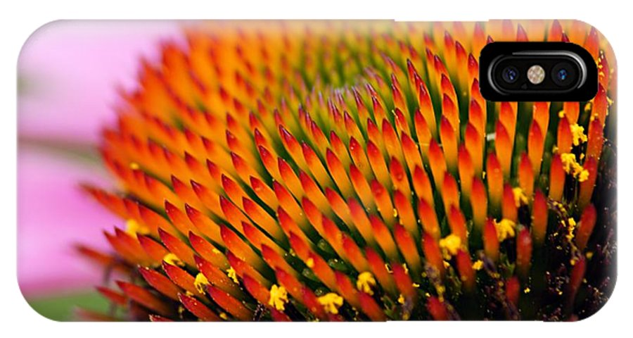 Cone Flower IPhone X Case featuring the photograph Cone Flower Closeup by Larry Ricker