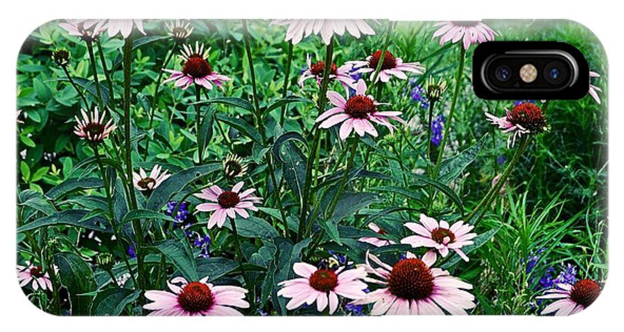 Coneflowers IPhone X Case featuring the photograph Coneflower Garden by James DeFazio