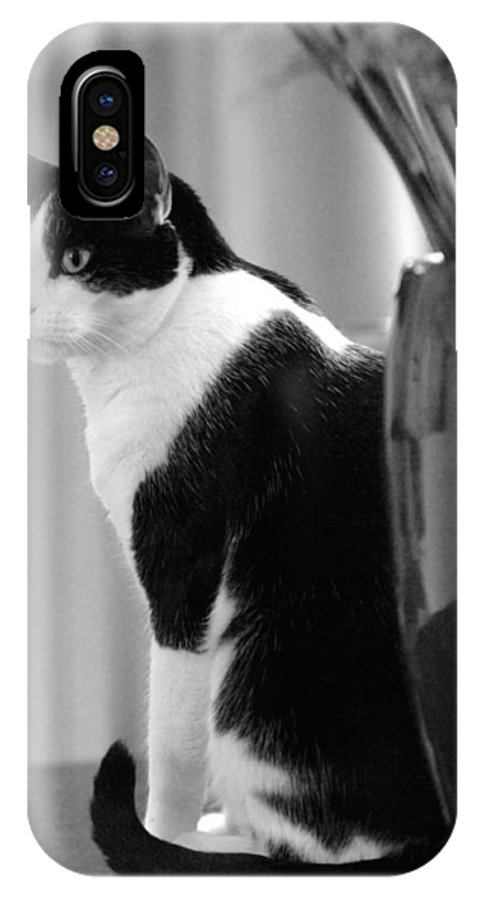 Black And White IPhone X Case featuring the photograph Contemplative Cat Black And White by Jill Reger