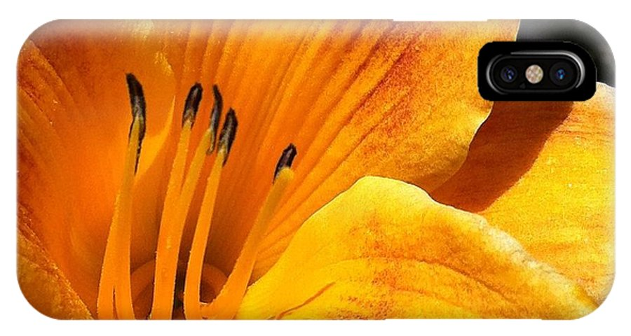 Flower IPhone X Case featuring the photograph Contours To Admire by Mary Chris Hines