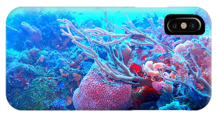 IPhone X Case featuring the photograph Coral Candy by Todd Hummel