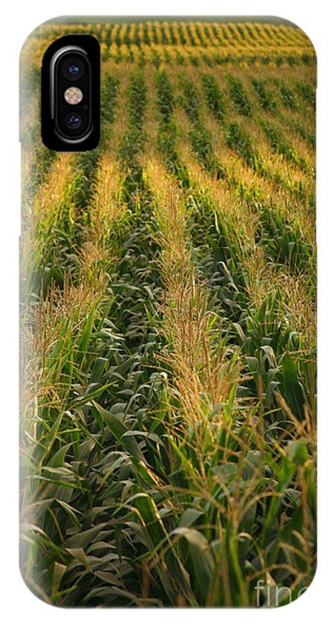 Acores IPhone X Case featuring the photograph Corn Field by Gaspar Avila