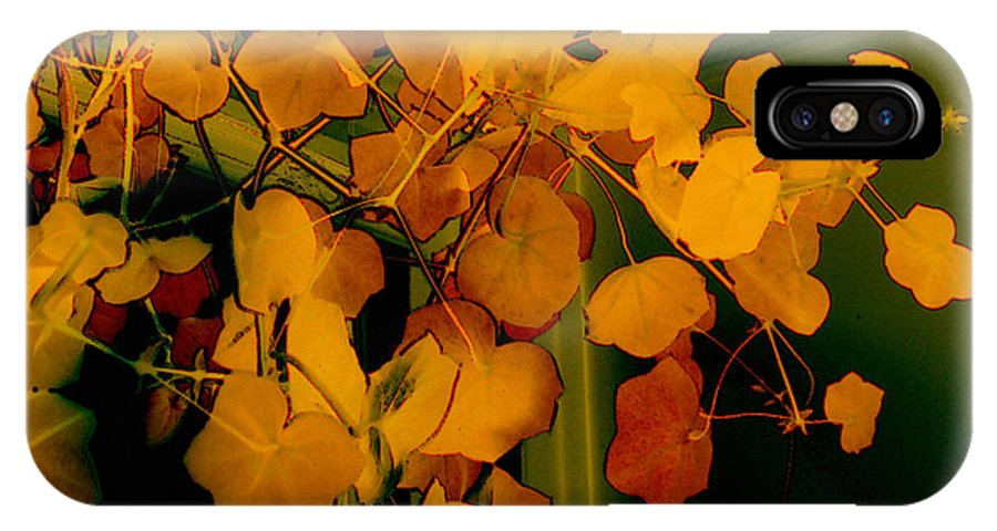 Autumn IPhone X Case featuring the digital art Corner In Green And Gold by RC DeWinter
