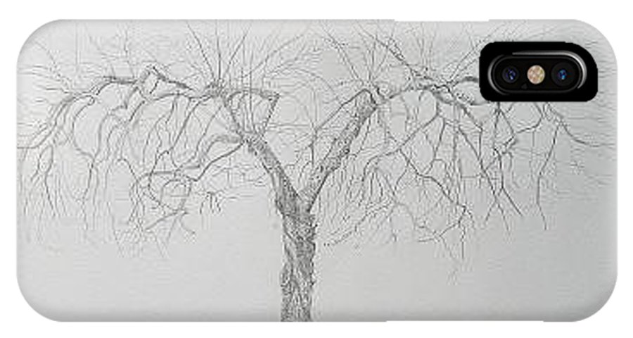 Cortland Apple Tree IPhone X Case featuring the drawing Cortland Apple by Leah Tomaino