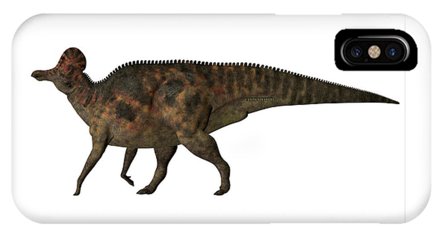 Corythosaurus IPhone X Case featuring the painting Corythosaurus On White by Corey Ford