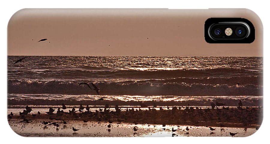 Birds IPhone X / XS Case featuring the photograph Costa Rica 040 by Howard Stapleton