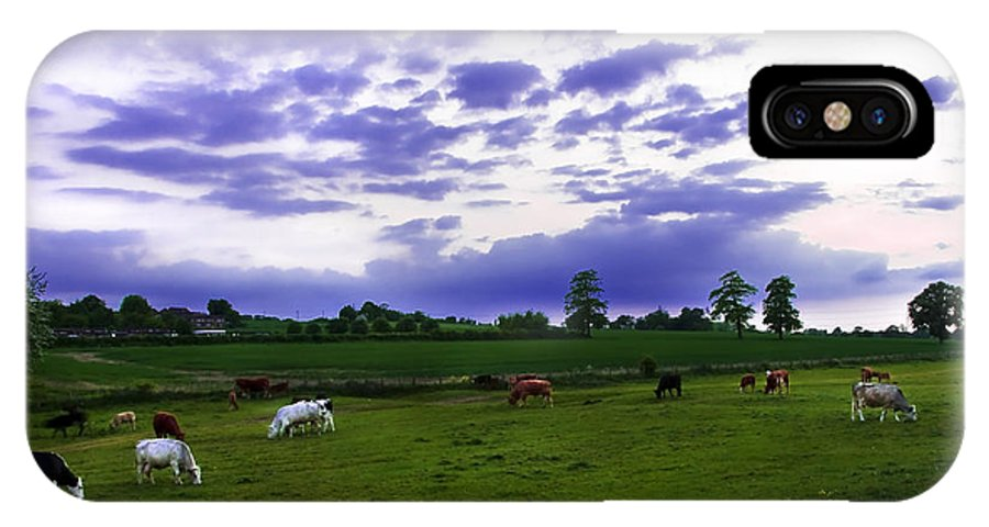 Countryside IPhone X Case featuring the photograph Cow Field by Svetlana Sewell