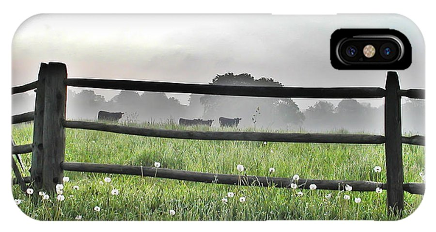Whitemarsh IPhone X Case featuring the photograph Cows In Field by Bill Cannon