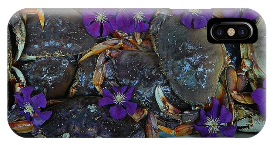 Award Winning Photo IPhone X Case featuring the photograph Crab Feed by Shannon West