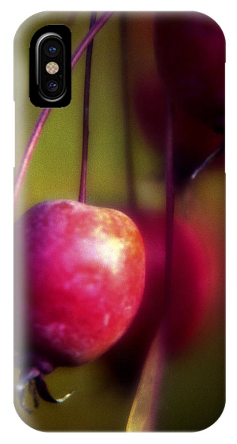 Macro IPhone X Case featuring the photograph Crabapple by Lee Santa