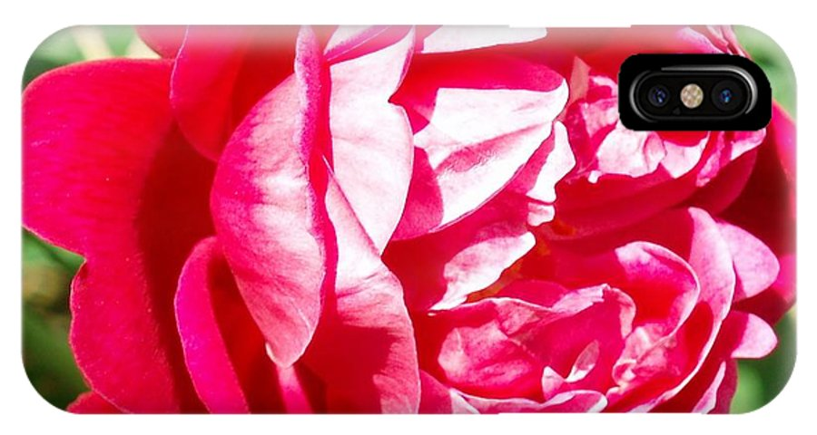 Rose IPhone X Case featuring the photograph Cramoisi Superieur by Eric Howell