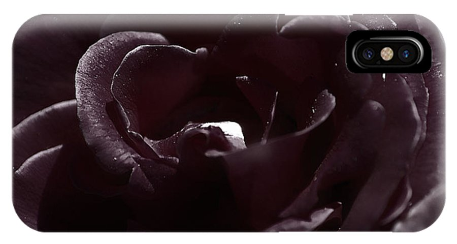 Clay IPhone Case featuring the photograph Cranberry Rose by Clayton Bruster