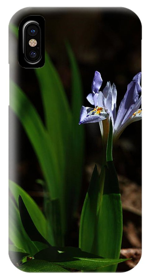 Crested Iris IPhone X Case featuring the photograph Crested Iris In Lost Valley by Michael Dougherty