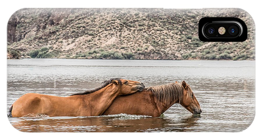 Horses IPhone X / XS Case featuring the photograph Crossing The River by Sandy Klewicki