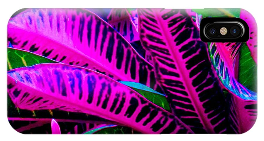 Croydon Plants Purple Green IPhone Case featuring the photograph Croton by Ian MacDonald
