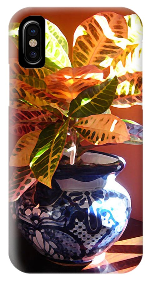 Potted Plant IPhone Case featuring the photograph Croton In Talavera Pot by Amy Vangsgard