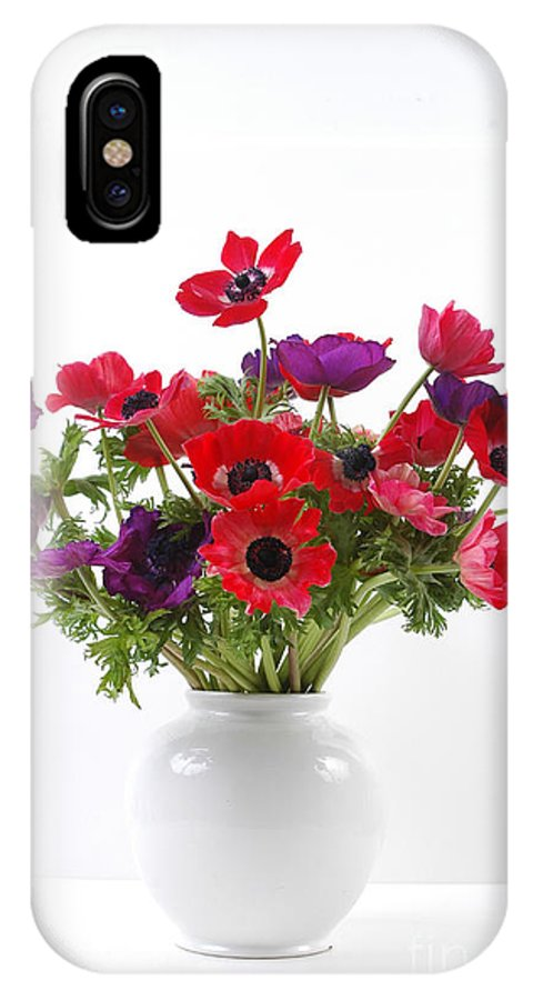 Flower IPhone X Case featuring the photograph crown Anemone in a white vase by Ilan Amihai