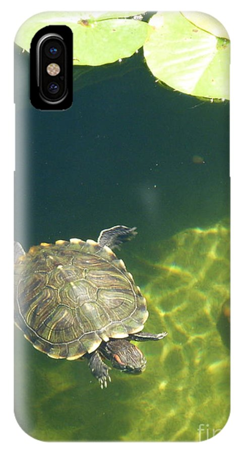 Pond IPhone X Case featuring the photograph Curiosity by Elizabeth Ren