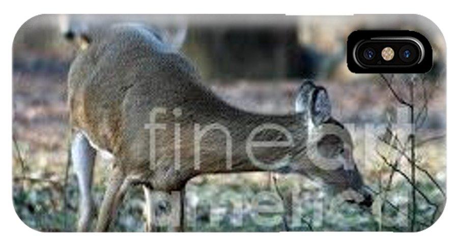 Whitetail Deer IPhone X / XS Case featuring the photograph Curious Deer by Lana Raffensperger