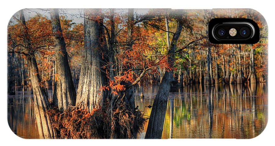 Fall Photographs IPhone X Case featuring the photograph Cypress Group by Ester Rogers