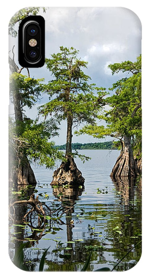 Trees IPhone Case featuring the photograph Cypress Reflections by Christopher Holmes