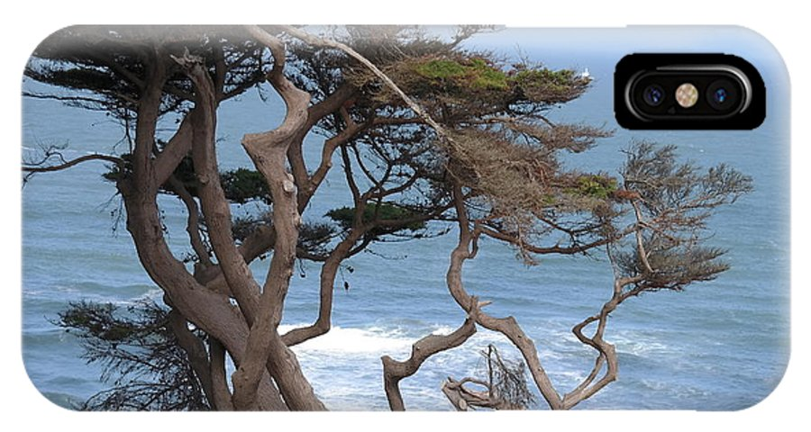 Landscape IPhone X Case featuring the photograph Cypress On The Cliff 15 by Pusita Gibbs