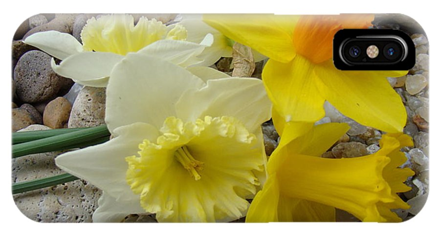�daffodils Artwork� IPhone X Case featuring the photograph Daffodils Flower Artwork 29 Daffodil Flowers Agate Rock Garden Floral Art Prints by Baslee Troutman