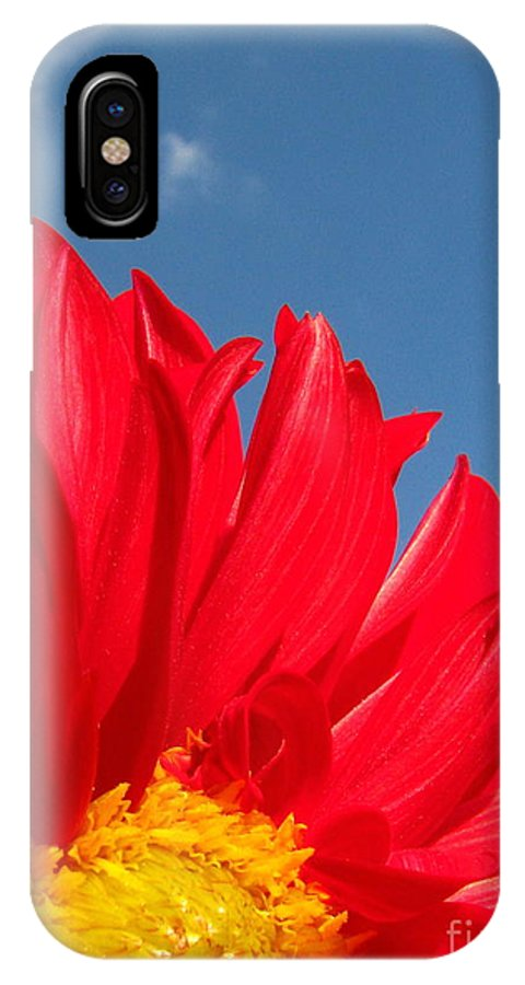 Dahlia IPhone X Case featuring the photograph Dahlia by Amanda Barcon