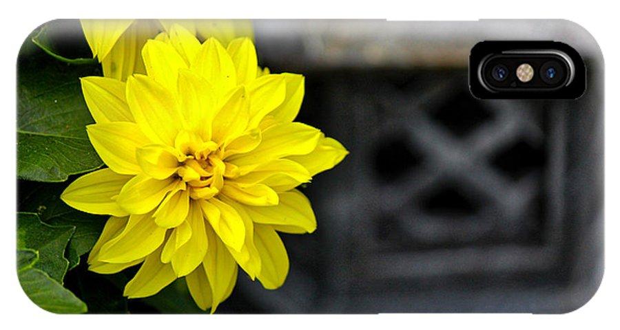 Dahlia IPhone X Case featuring the photograph Dahlia Meditation by Karin Everhart