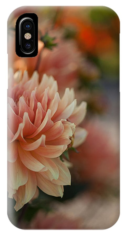 Flower IPhone X Case featuring the photograph Dahlias Season by Mike Reid