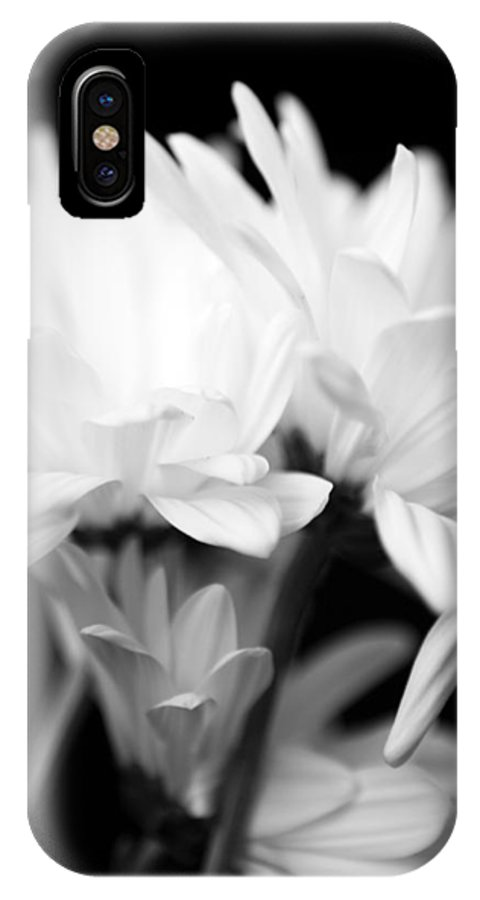 Floral IPhone Case featuring the photograph Daises In Black And White by Ayesha Lakes