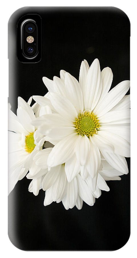 Floral IPhone X Case featuring the photograph Daisies by Ayesha Lakes