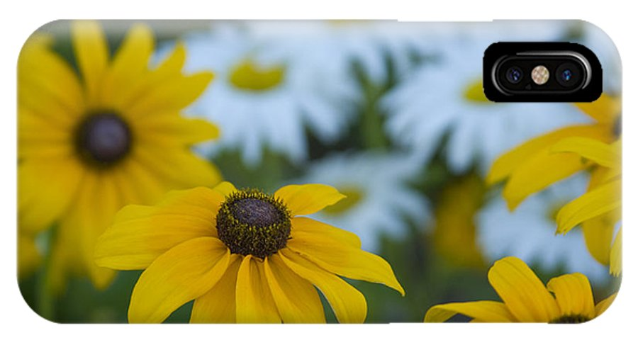 Daisy IPhone X Case featuring the photograph Daisies by Idaho Scenic Images Linda Lantzy