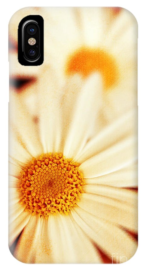 Close Up IPhone X Case featuring the photograph Daisies by Silvia Ganora