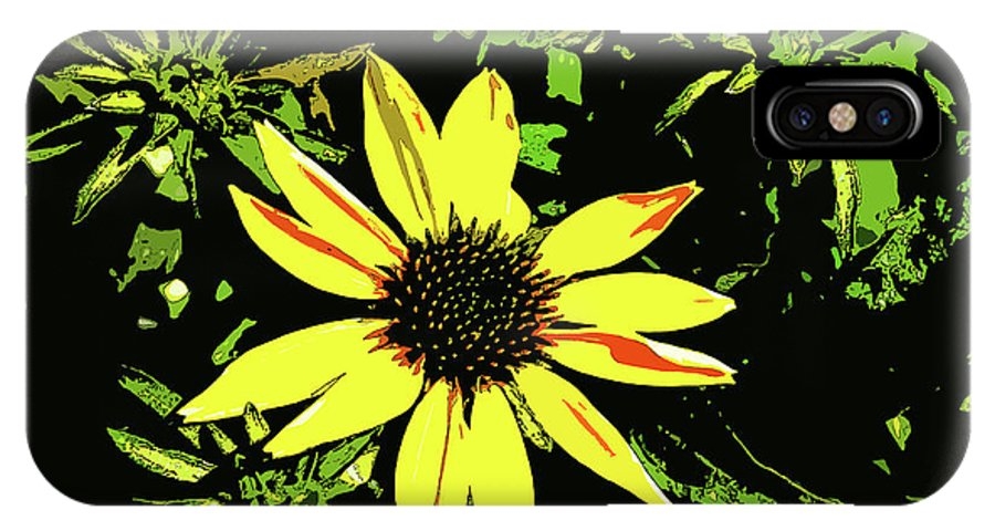 Daisy Bell IPhone X / XS Case featuring the photograph Daisy Bell by Susan Vineyard