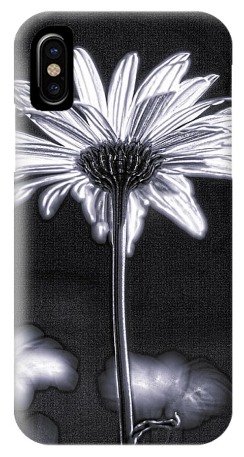 Black & White IPhone X Case featuring the photograph Daisy by Tony Cordoza