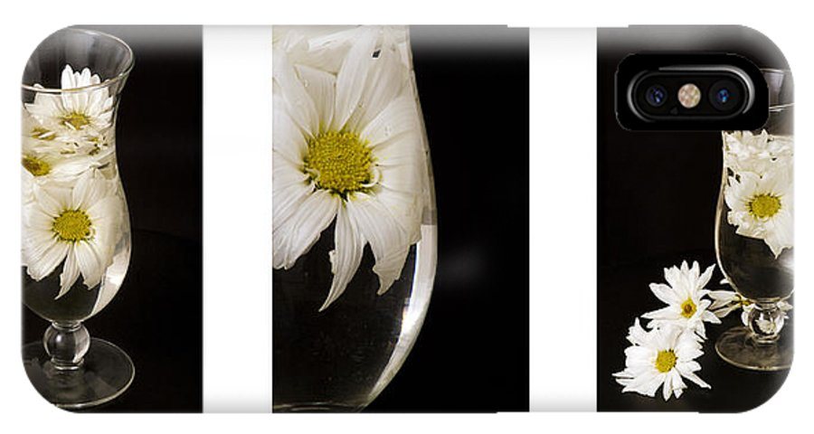 Flowers IPhone X Case featuring the photograph Daisy Triptych by Ayesha Lakes