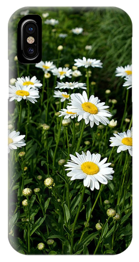 Daisy IPhone X Case featuring the photograph Daisy Tunnel by Valerie Fuqua