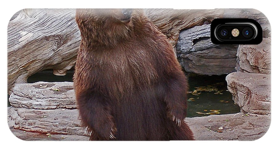 Animals IPhone X Case featuring the photograph Dancing Grizzly by Ernie Echols